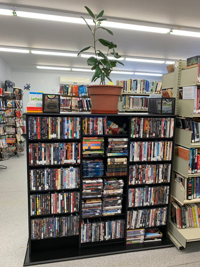 A shelf full of books in the Whitney Library, Township of South Algonquin