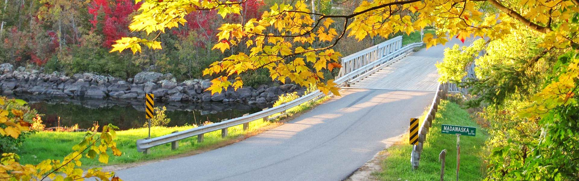 Bright autumn colours over a roadway in Whitney